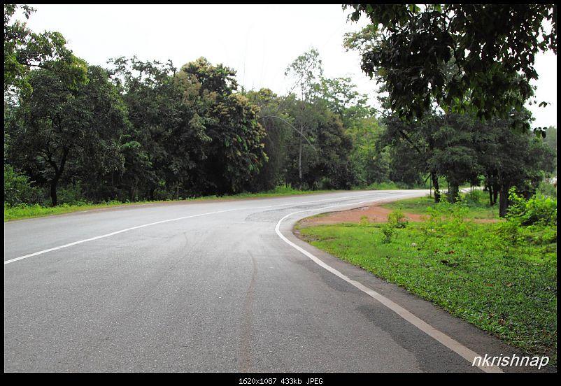 Monsoon dash to Malnad - Jog & Unchalli Falls-img_5684.jpg