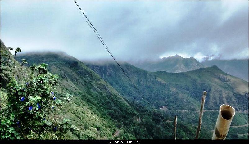 'BEAT'-ing the Drizzle at Munnar and Palakkad-img_20140831_104500461_hdr.jpg