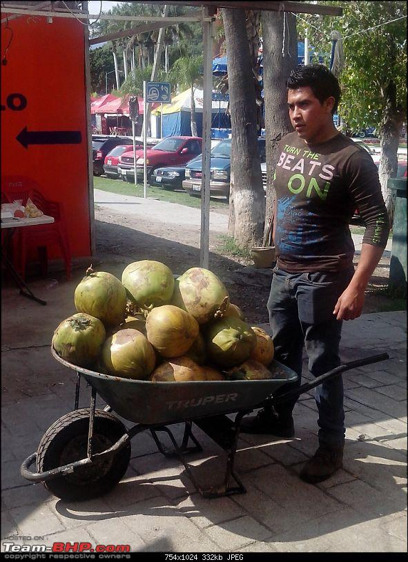 Let's know about Guadalajara! Living & working in Mexico-market8.jpg