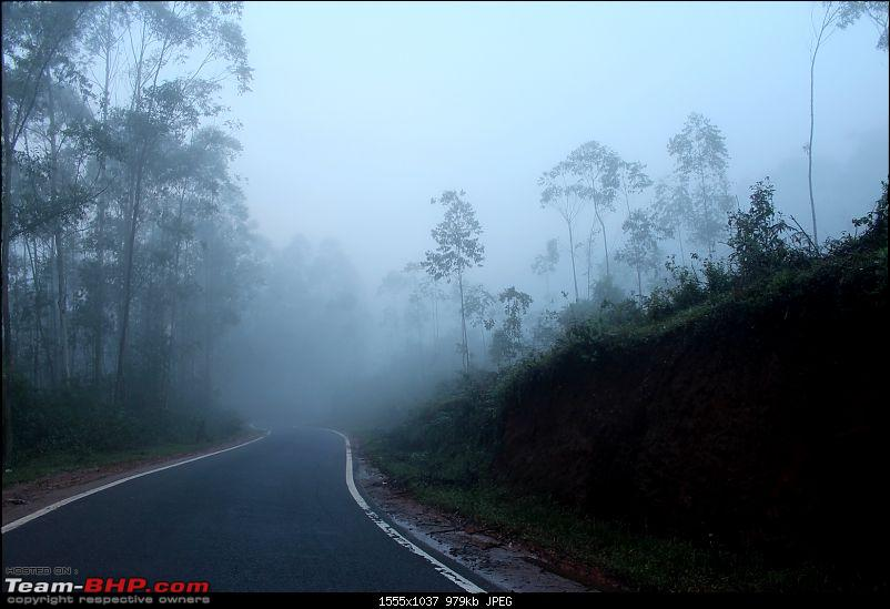 Polo GT TDI Chronicles - From Surat to God's Own Country for my Wedding!-munnar_5.jpg