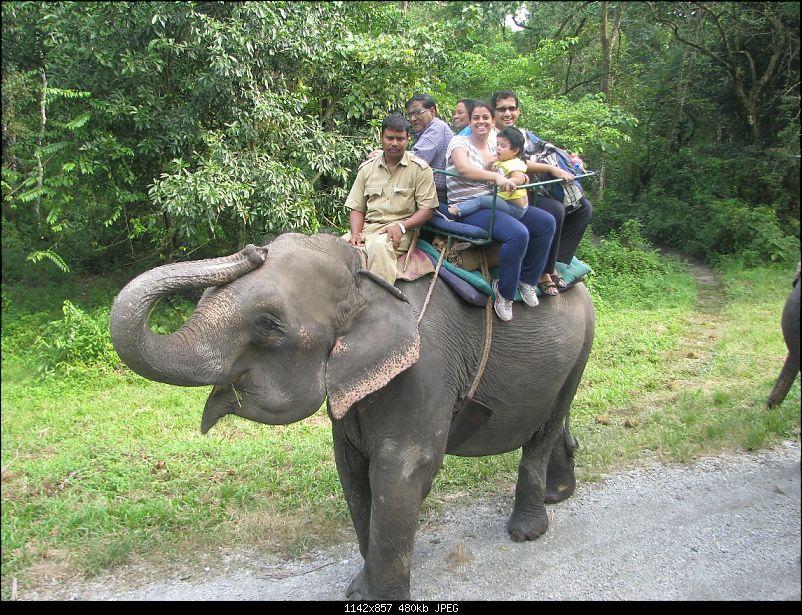 Nature, Culture & Fun – Jaldapara & Bhutan in a Safari Storme-b38.jpg