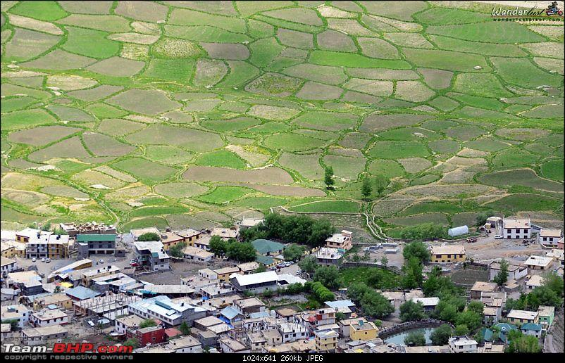 Spiti Valley on a Bicycle!-19.jpg