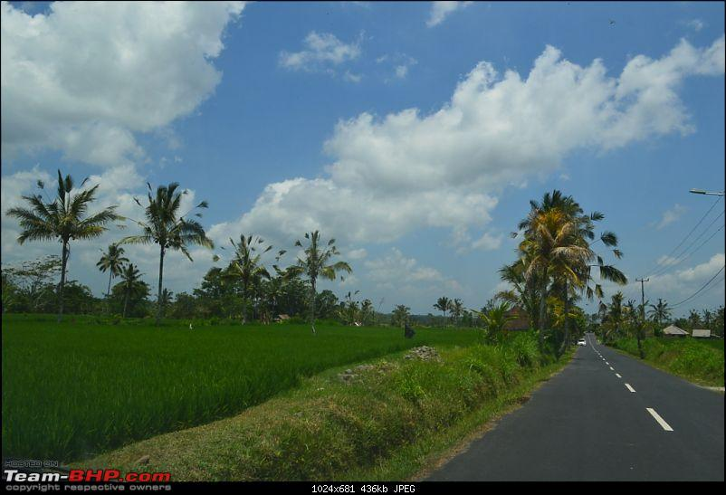 Story of the little piece of Bali in our hearts!-dsc_0552.jpg