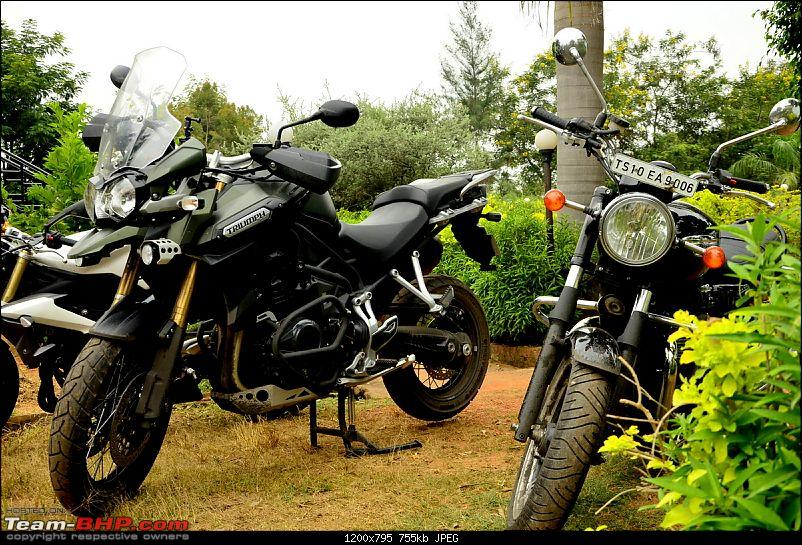 Triumphs & Tigers : Heady combination for a 1000 kms weekend ride!-_dsc1921.jpg