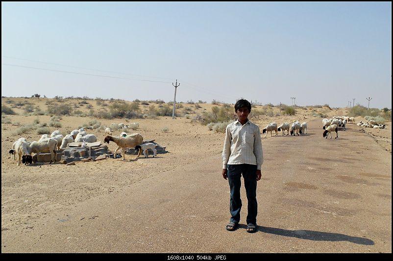 Desert Storm'd into the Thar Desert and the Little Rann of Kutch-dscn2075.jpg