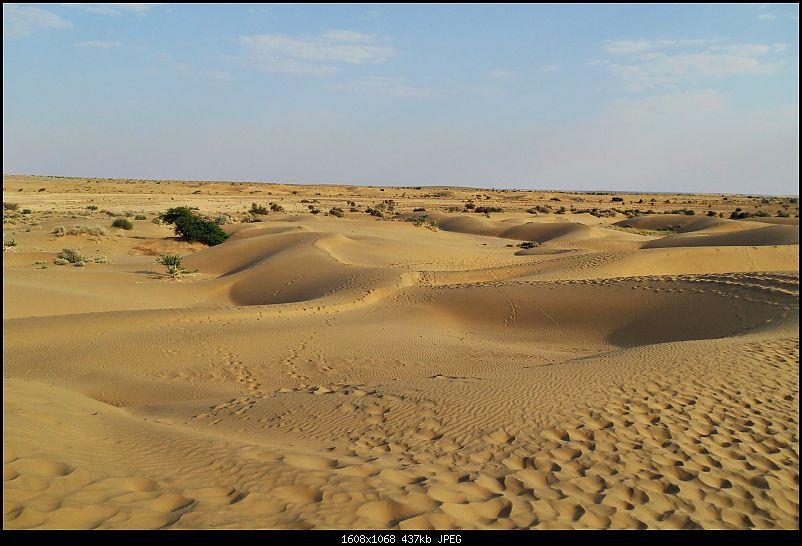 Desert Storm'd into the Thar Desert and the Little Rann of Kutch-dscn2110.jpg