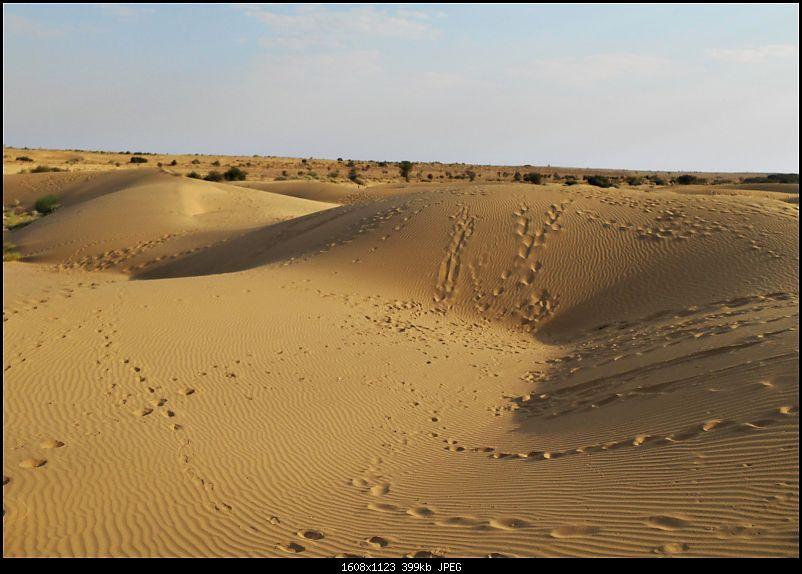 Desert Storm'd into the Thar Desert and the Little Rann of Kutch-dscn2122.jpg
