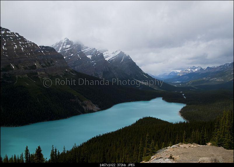 Trip to Alberta, Canada-p1030428.jpg