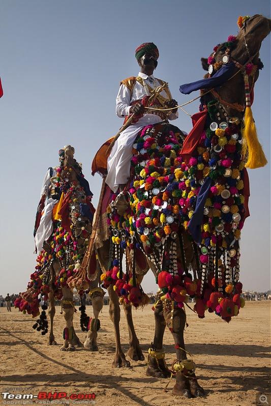 Reliving the glory of the Jaisalmer Desert Festival-camel-parades.jpg