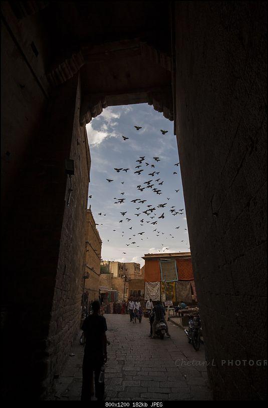Reliving the glory of the Jaisalmer Desert Festival-fort-1.jpg