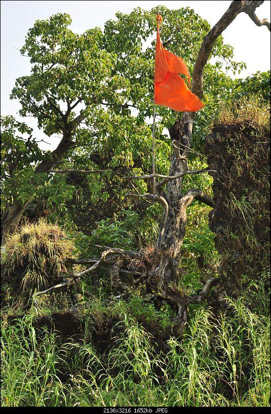 Treks around Mumbai: Karnala Bird Sanctuary & Kalavantin Durg-dsc_0129.jpg