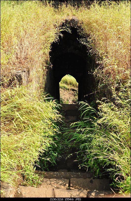 Treks around Mumbai: Karnala Bird Sanctuary & Kalavantin Durg-dsc_0143.jpg