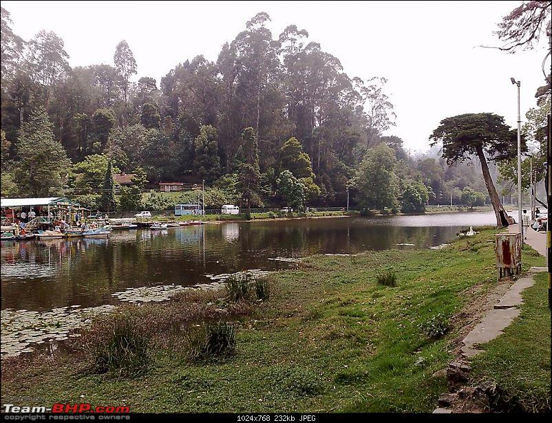 Kodaikanal through my eyes-kodai-032-large.jpg