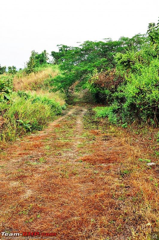 Treks around Mumbai: Karnala Bird Sanctuary & Kalavantin Durg-dsc_0051.jpg