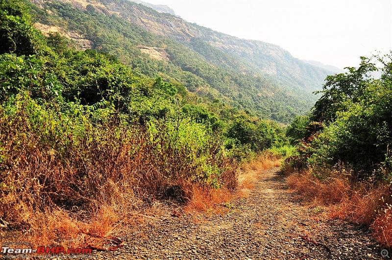 Treks around Mumbai: Karnala Bird Sanctuary & Kalavantin Durg-dsc_0283.jpg
