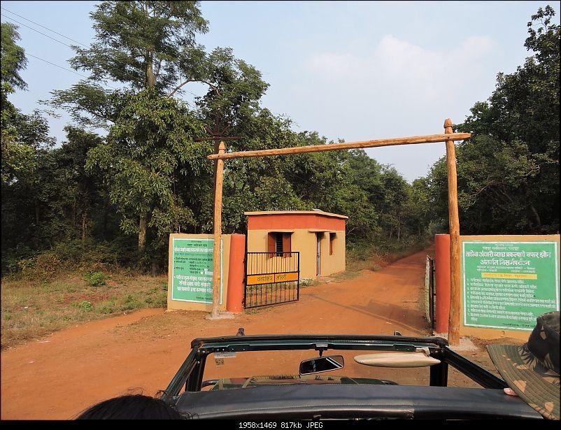Waghoba at Tadoba-9.jpg