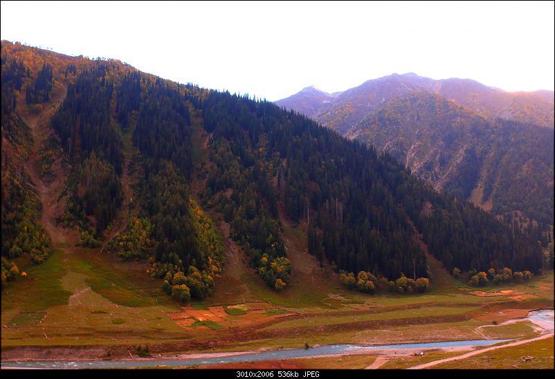 The Northern Expedition - Mumbai to Ladakh-towards-sonmarg.jpg