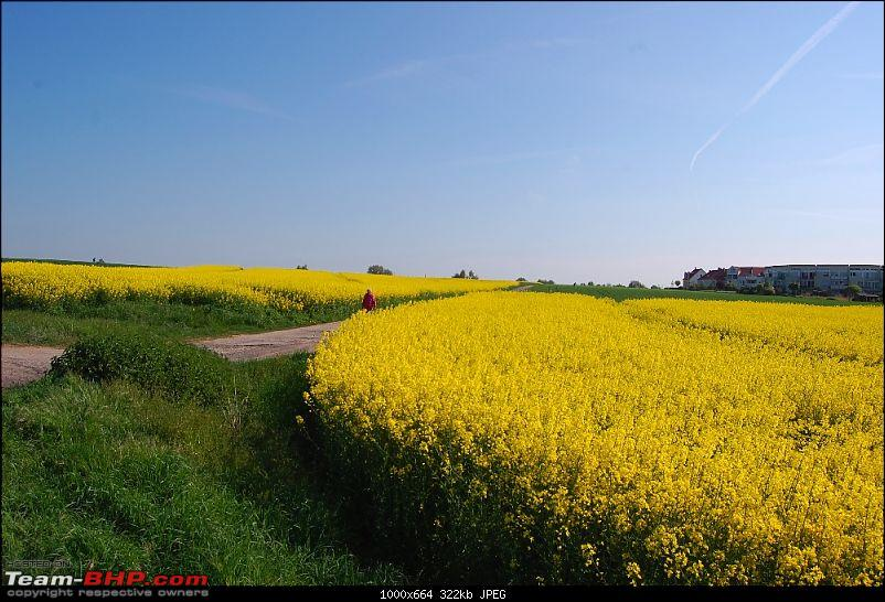YetiBlog® - Sleepless in Europe-dsc_8221_l.jpg