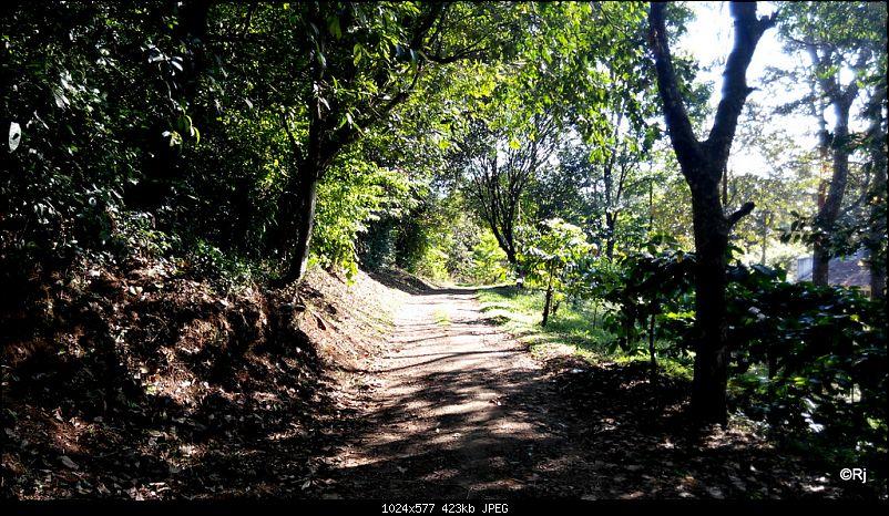 Back to the hills - Weekends @ Sringeri & Wayanad-2_2.jpg