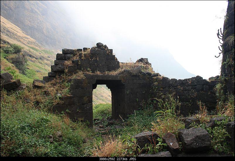 Wandering in the Sahyadris-picture-282.jpg