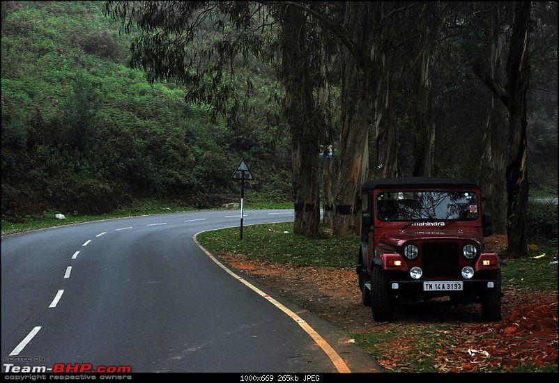 Chennai to Ooty family trip - Why not in a Thar?-ooty2.jpg