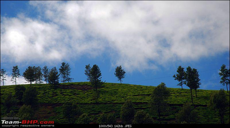 Chennai to Ooty family trip - Why not in a Thar?-glenmorganway.jpg