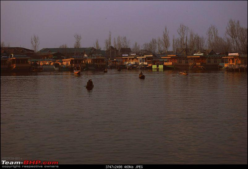 Kashmir in January: Srinagar (sans snow after floods), Gulmarg, Yousmarg & Pahalgam-dallake-5.jpg
