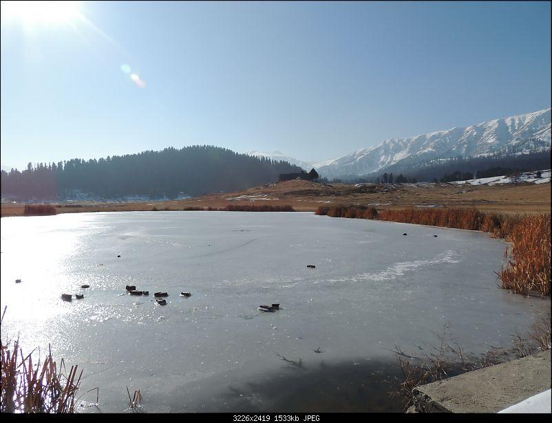 The White Album - Gulmarg, Kashmir-dscn2991.jpg
