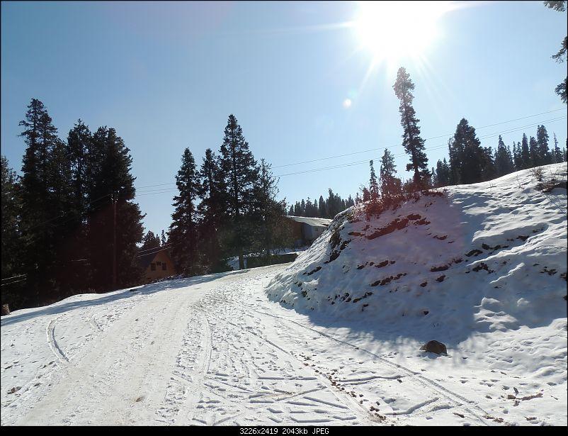 The White Album - Gulmarg, Kashmir-dscn3041.jpg