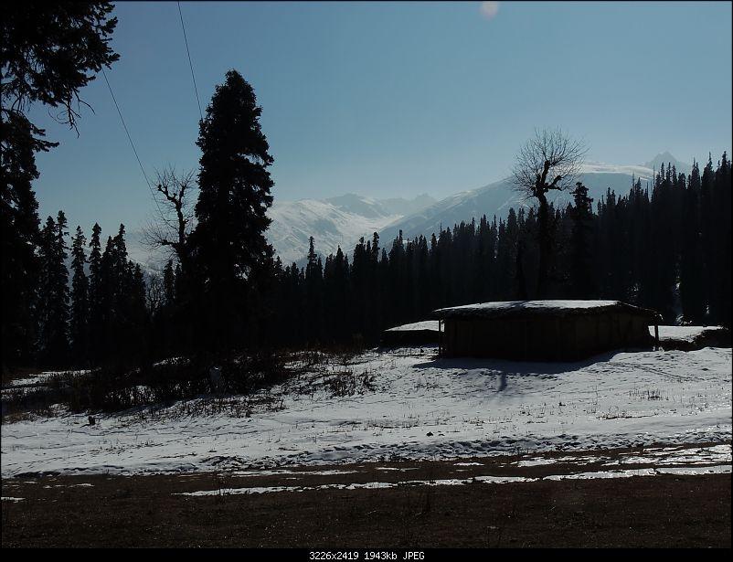 The White Album - Gulmarg, Kashmir-dscn3087.jpg