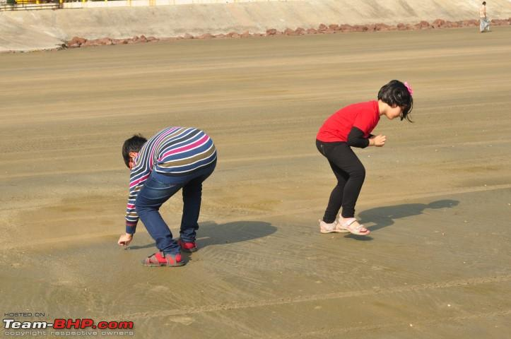 Name:  Collecting Shells Jan 05 140 PM.JPG