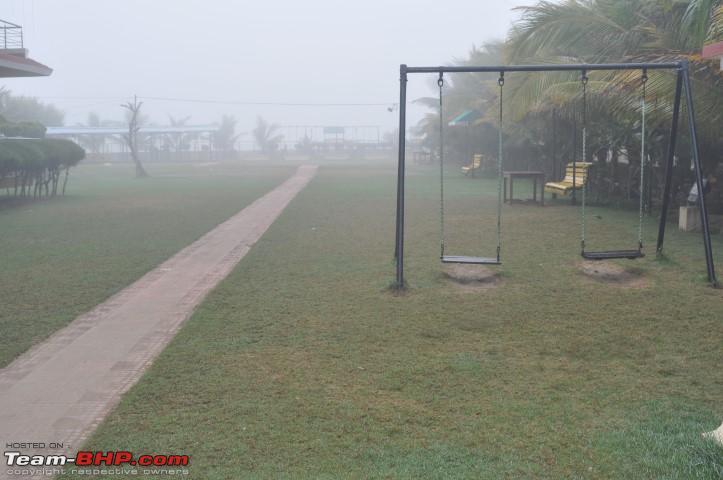 Name:  The Grounds and Fog  Jan06 8AM.JPG