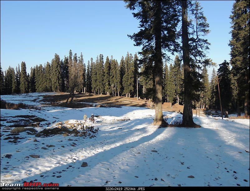 The White Album - Gulmarg, Kashmir-dscn3223.jpg