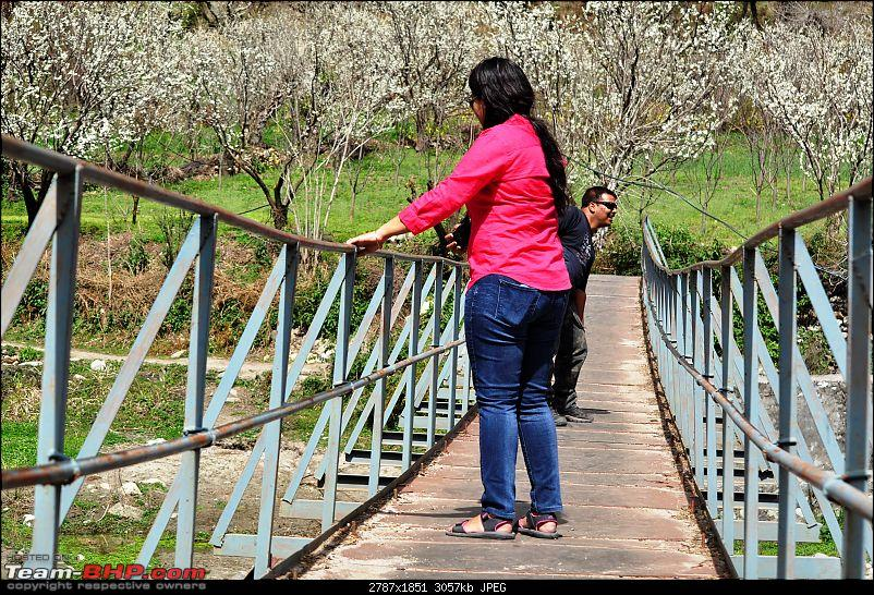Tirthan Valley � A slice of divinity-bridge2.jpg