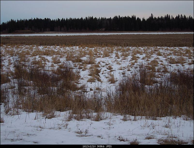 Trip to Alberta, Canada-3.jpg