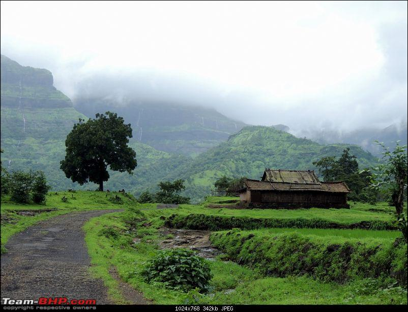 Malshej during the monsoons: One day escapade of two jobless BHPians-110.jpg