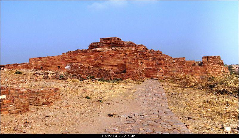 A week's drive through Rajasthan Part II - The desert wind blows over Marwar-dsc03517.jpg