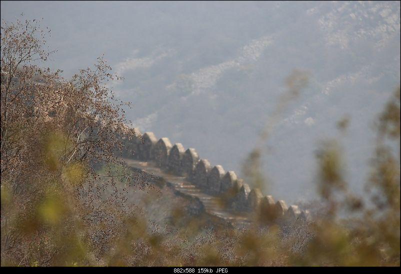 Fortuner Trail: Alwar, Bhangarh & Sariska-img_0475.jpg