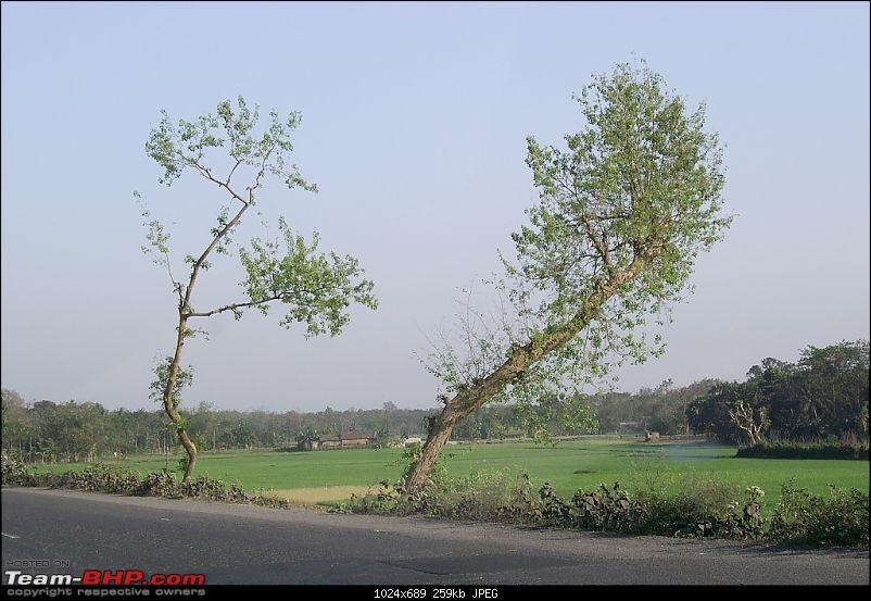 West Bengal - A treasure for tourists-pic_0060.jpg