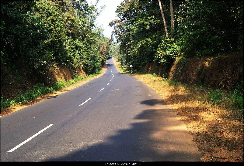 A Junglee prelude to a Sunny New Year - Dandeli & Goa-dsc02276.jpg