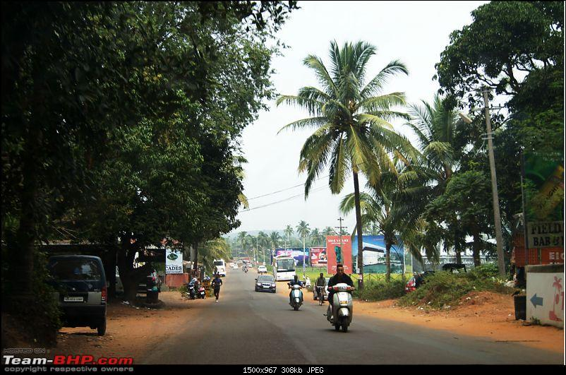 A Junglee prelude to a Sunny New Year - Dandeli & Goa-dsc02619.jpg