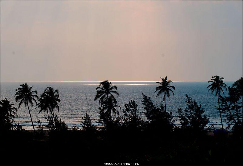 A Junglee prelude to a Sunny New Year - Dandeli & Goa-dsc02728.jpg
