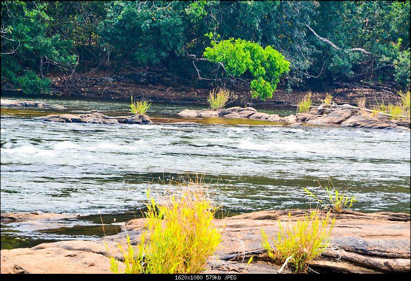 Voyage: Ellaveezhapoonchira, Kerala - A Solo Conquer-tn_dsc_0045.jpg