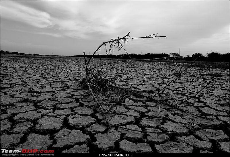 Kutch Expedition with a Mahindra Logan-bw-still-parched-earth.jpg