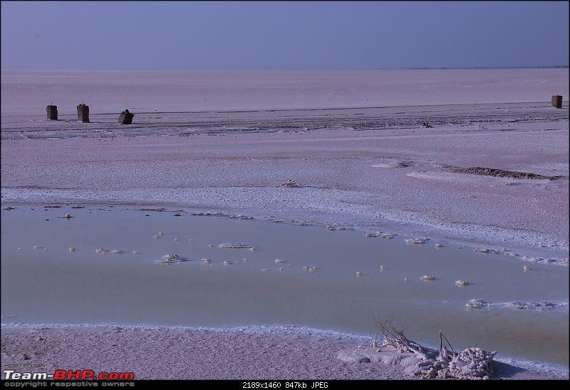 Kutch Expedition with a Mahindra Logan-white-ddesert-11.jpg