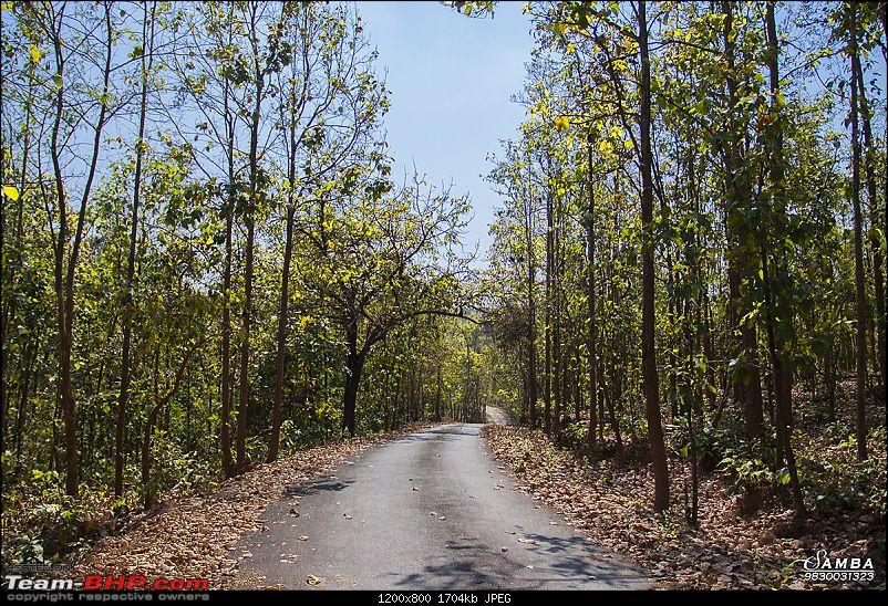 West Bengal - A treasure for tourists-img_6382.jpg