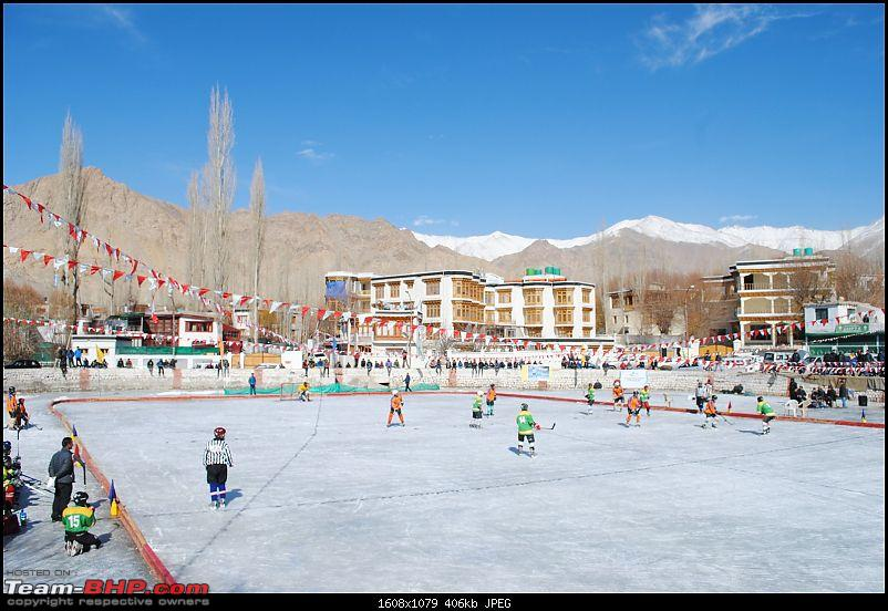 Where eagles dare: A winter sojourn to Ladakh!-dsc_0097.jpg