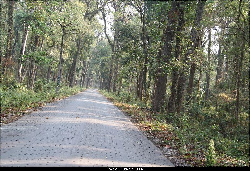 Arunachal beckons! Road-trip with a Tata Safari to North Eastern India-img_9321.jpg