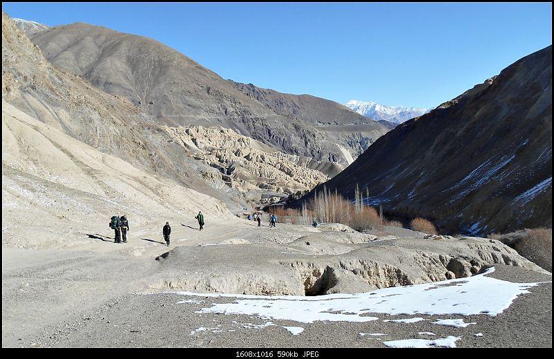 Where eagles dare: A winter sojourn to Ladakh!-dscn3717.jpg