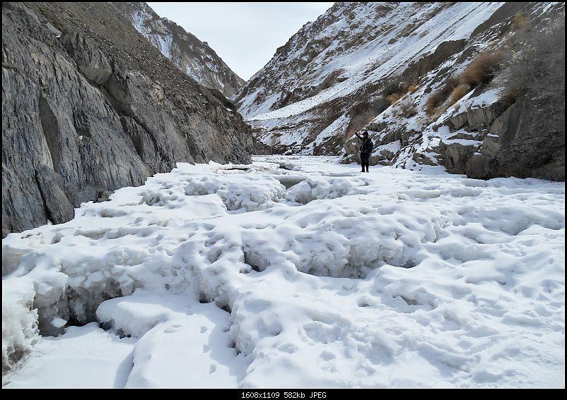 Where eagles dare: A winter sojourn to Ladakh!-dscn3828.jpg